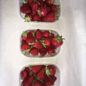 lot de 3 barquette de fraise